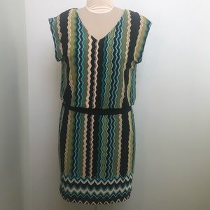 Sandra Darren Sleeveless Striped Dress size 10